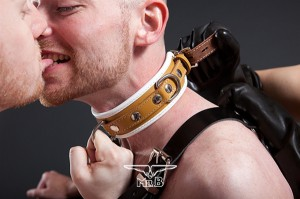 Mister B Medical Padded Leather Collar