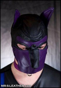 Mr S Custom Leather Dog Hood