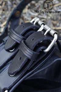 Detail of the Two Straps with Roller Buckels on the Collar