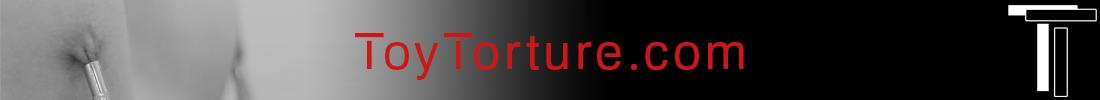 ToyTorture.com