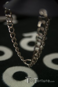 Detail of the Chains and their connecting Ring