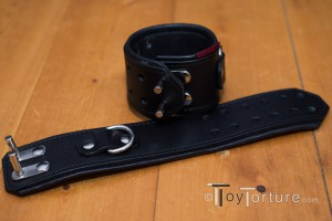 Detail of the two Wrist Restraints