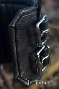 Detail of the Roller Buckles and the Padding