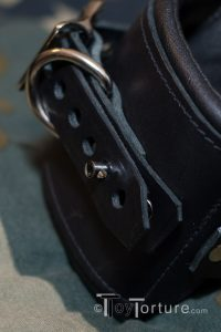 Detail of the Locking Post and the D-Ring next to the Roller Buckles