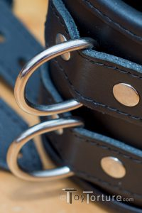 Detail of one of three D-Ring Pairs per Restraint